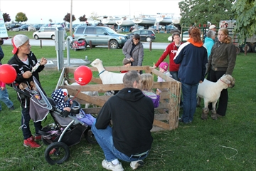 The petting zoo at the Family Festival was a huge hit.