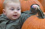 Sophia In pumpkins