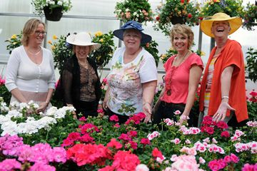 Orangeville Flowers and Greenhouse owner Joanne Woudenberg joined Lord Dufferin IODE members Dori Ebel, Sandra Voisey, Leslie McMahon and Ronnie Inglis to kick off the group's annual geranium sale. Flowers are available in red, salmon, pink and white by calling (519) 941-1865, (519) 941-1503 or (519) 940-1180. Pick-up of purchased plants takes place May 22 and May 23 between 9 a.m. and 9 p.m. at 12 Leader Dr.