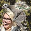 Amazing Animals Video Series