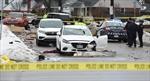 Belmont crash