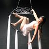 Win tickets to Dream Chest Circus in Barrie