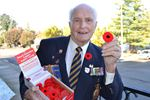 Poppy Campaign kicks off in Simcoe County