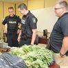 Port Hope drug operation