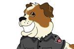 Hamilton Animal Services mascot