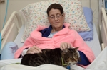 Hamilton service unites patients and pets-Image1