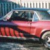 Stolen Mustang