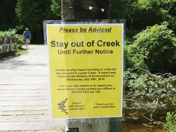 Heber Downs creek advisory