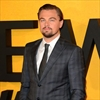 Leonardo DiCaprio produces gorilla documentary for Netflix-Image1