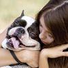 Safe Families Safe Pets