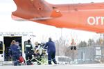 Ornge bird hit