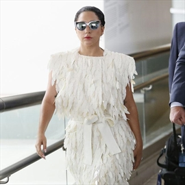 Lady Gaga creating puppy clothing line-Image1
