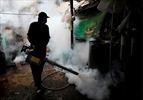 Thailand confirms SE Asia's first Zika-linked birth defects-Image1