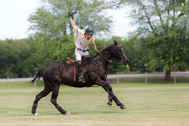 Wainfleet centre's Polo for Health to support Niagara Health