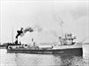 steamer wreck