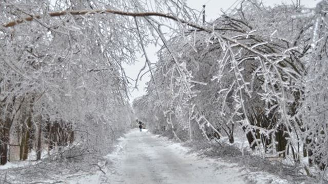 Environment Canada issues freezing rain warning for ...  Environment Can...