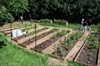 Rexdale gardens