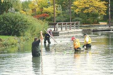 Sailing Pond Clean-up