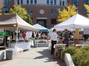 DDSB farmers' market