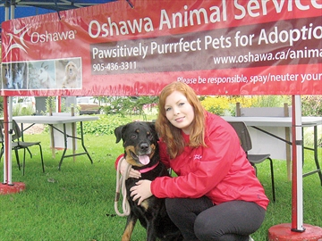 Oshawa Animal Services adoption open house