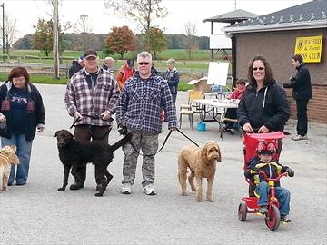Blackstock Purina Walk for Dog Guides