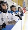 Pro-Action hockey