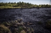 Russian oilpatch ignores rights: aboriginals-Image1