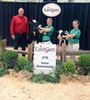 4-H Lincoln Dairy Club