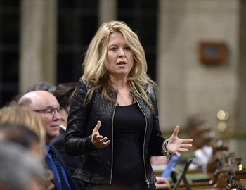 Tory MPs call on Ottawa to stop border jumpers-Image1