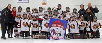 Oakville peewee A Hornets' dominance continues at Lower Lakes finals