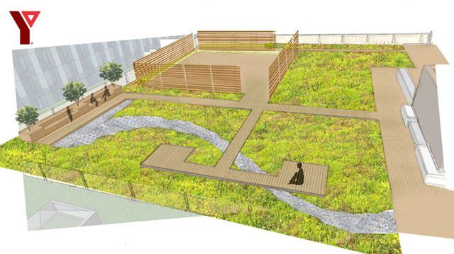 Cooper Koo YMCA green roof