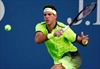 For del Potro and Tipsarevic, 1st US Open wins since 2013-Image2