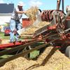 Antique Tractor Show outside Meaford coming up