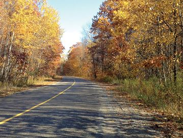 Five things to do on the first day of fall in north Simcoe