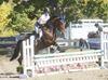 Equestrian at the Milton Fall Fair