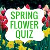 QUIZ: Can you identify these spring flowers?