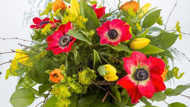 Mother s day gift idea surprise mom with a diy floral