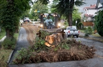 Thousands still without power after B.C. storm-Image1