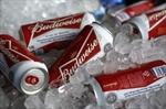 Beer merger
