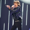 Luciana Gimenez denies tryst with Mick Jagger in 'kennel'-Image1
