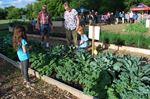 Riverdale Community Salad Bowl Garden