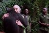 Wounda's hugs