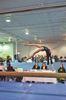 Twisters gymnast