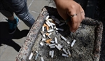 MDs can help youth avoid smoking: task force-Image1