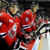 IceDogs squander lead, twice