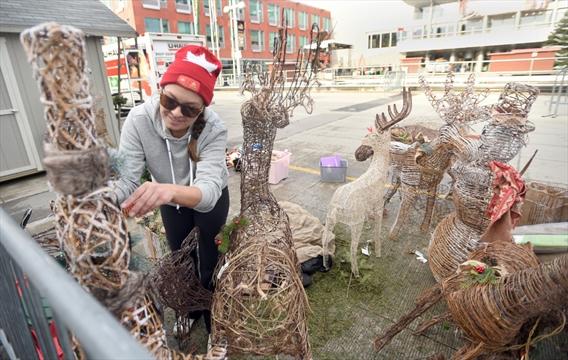 Volunteer Kitchener Waterloo Christmas