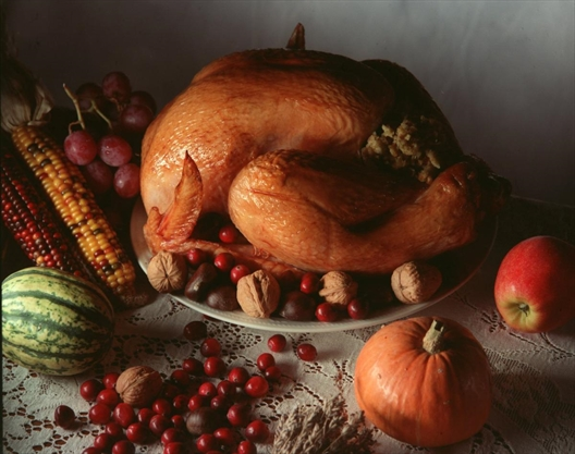 Seven things to do this Thanksgiving weekend in Hamilton (what's open and closed on Monday)