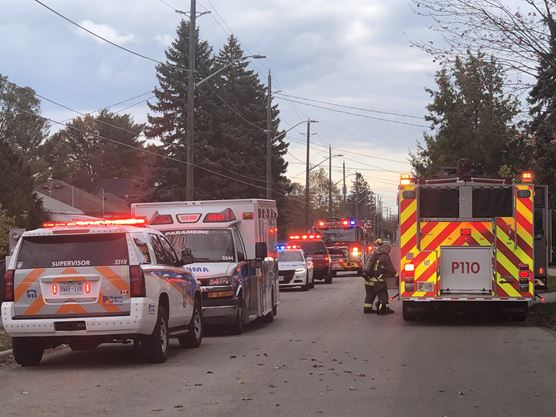 Cat found dead following Mississauga apartment fire