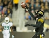 Mathews, Tiger-Cats down Roughriders 30-15-Image1