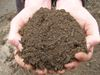 When should you add more topsoil?